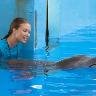 Dolphin Tale Picture 27