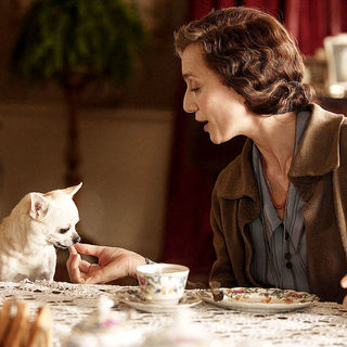 Easy Virtue Picture 61