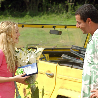50 First Dates Picture 6