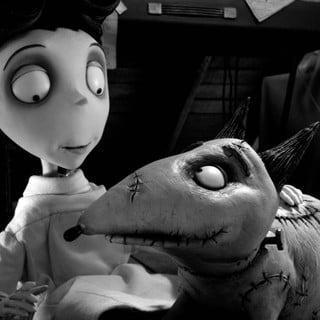 Frankenweenie Picture 9