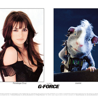 G-Force Picture 43