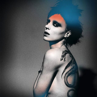 The Girl with the Dragon Tattoo  Picture 43
