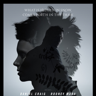 The Girl with the Dragon Tattoo  Picture 49