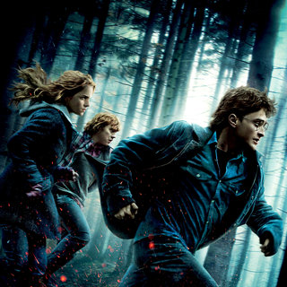 Harry Potter and the Deathly Hallows: Part I Picture 83