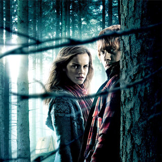 Harry Potter and the Deathly Hallows: Part I Picture 95