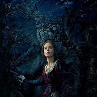 Into the Woods Picture 19