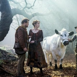 Into the Woods Picture 22
