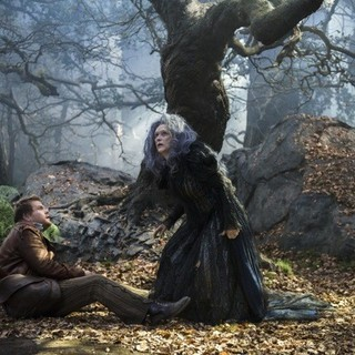 Into the Woods Picture 2