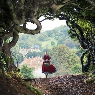 Into the Woods Picture 6