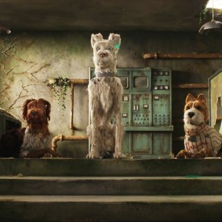 Isle of Dogs Picture 6