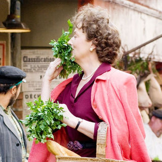 Meryl Streep stars as Julia Child in Columbia Pictures' Julie & Julia (2009) - julie_julia16