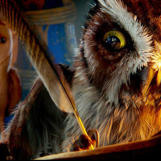 Legend of the Guardians: The Owls of Ga'Hoole - A scene from Warner Bros. Pictures' Legend of the Guardians: The Owls of Ga'Hoole (2010)
