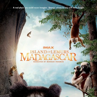 Poster of Warner Bros. Pictures' Island of Lemurs: Madagascar (2014)