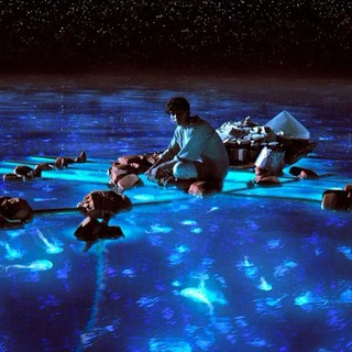 Life of Pi Picture 28