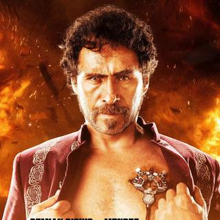 Machete Kills Picture 13