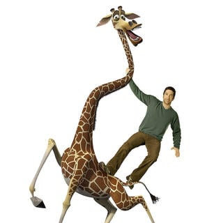 David Schwimmer voices Melman the giraffe in DreamWorks Pictures' Madagascar: Escape 2 Africa (2008) - madagascar2_26