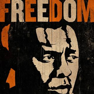 Mandela: Long Walk to Freedom Picture 2