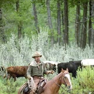 Open Range Picture 11