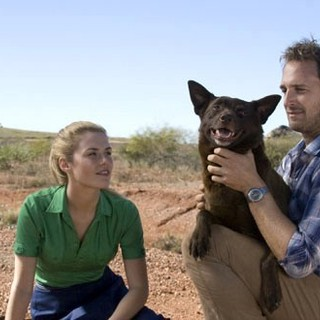 Rachael Taylor stars as Nancy and 	Josh Lucas stars as John in ARC Entertainment's Red Dog (2012)