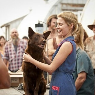 Rachael Taylor stars as Nancy in ARC Entertainment's Red Dog (2012)