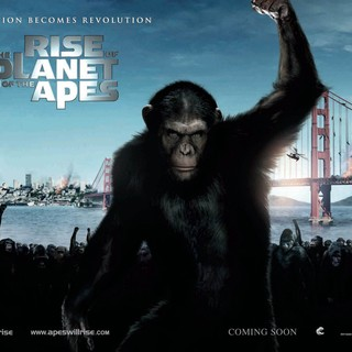 Rise of the Planet of the Apes Picture 40