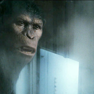Rise of the Planet of the Apes Picture 8