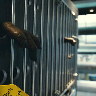 Rise of the Planet of the Apes Picture 11