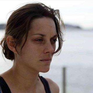 Rust and Bone Picture 13