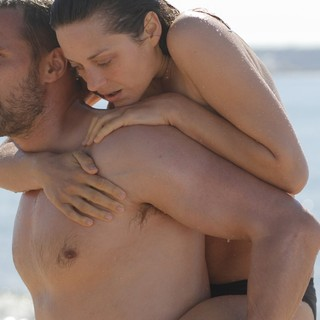 Rust and Bone Picture 15