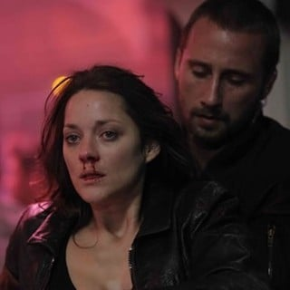Rust and Bone Picture 5