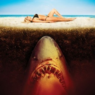 Sand Sharks Picture 16