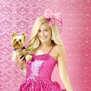 Sharpay's Fabulous Adventure Picture 1