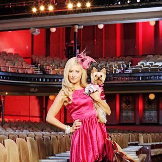 Sharpay's Fabulous Adventure Picture 13