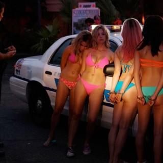 Spring Breakers Picture 9