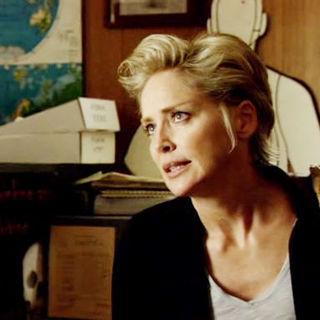 Sharon Stone stars as Nina Ferraro in Anchor Bay Entertainment's Streets of Blood (2009)