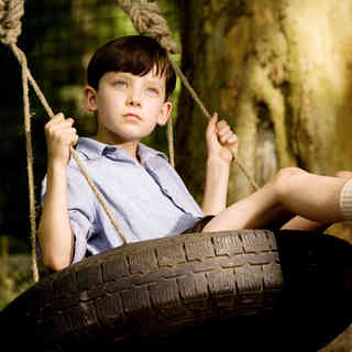 The Boy in the Striped Pajamas Picture 24