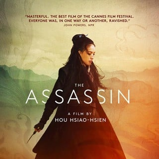 Poster of Well Go USA's The Assassin (2015)