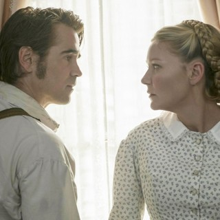 The Beguiled photo