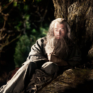 Ian McKellen stars as Gandalf in Warner Bros. Pictures' The Hobbit: An Unexpected Journey (2012)