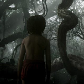 The Jungle Book photo