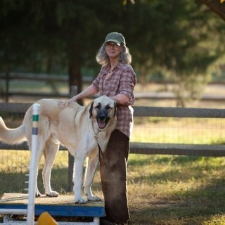 The Lucky One Picture 11