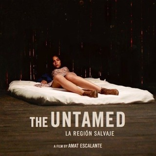 The Untamed photo
