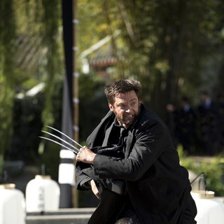 The Wolverine Picture 38