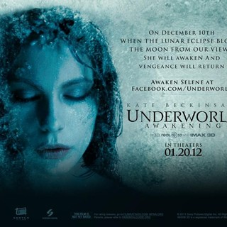 Underworld: Awakening Picture 12