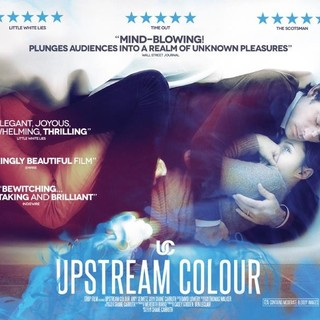 Upstream Color Picture 15
