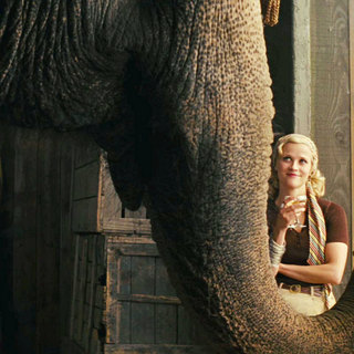 Water for Elephants - Robert Pattinson stars as Jacob Jankowski and Reese Witherspoon stars as Marlena Rosenbluth in 20th Century Fox's Water for Elephants (2011)