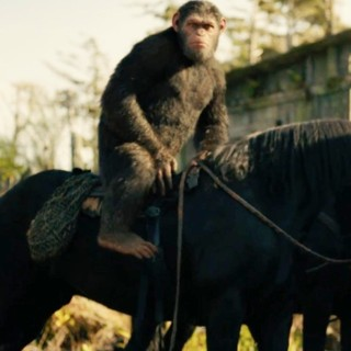 War for the Planet of the Apes - Maurice from 20th Century Fox's War for the Planet of the Apes (2017)