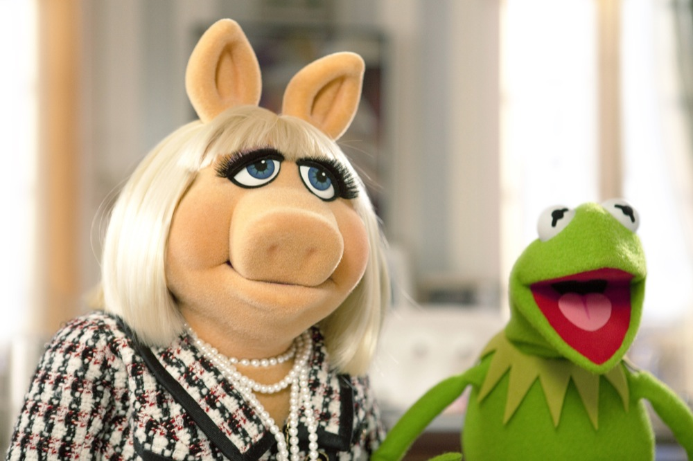 http://www.aceshowbiz.com/images/still/the-muppets-still02.jpg