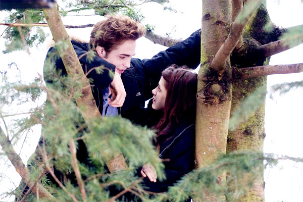 Robert Pattinson stars as Edward Cullen and Kristen Stewart stars as Bella Swan in Summit Entertainment's Twilight (2008)