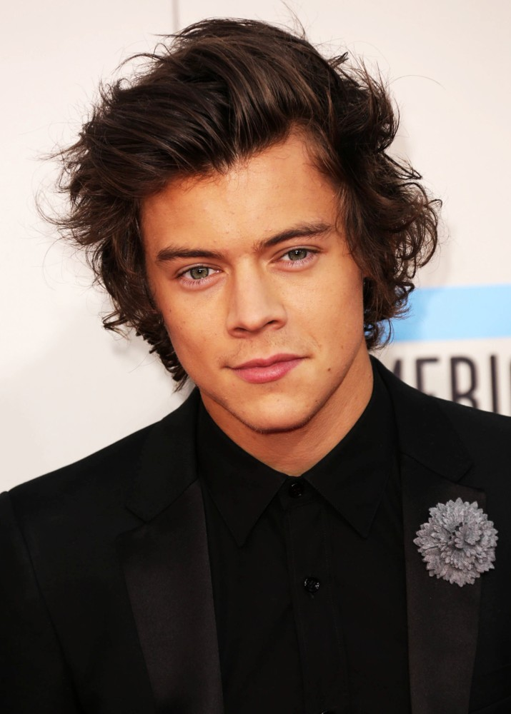 Harry Styles Picture 120 2013 American Music Awards